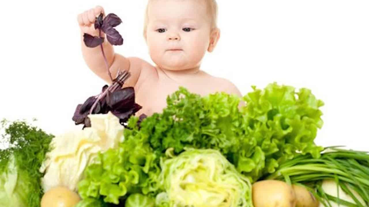 Vegan Parents Lose Their Baby 29